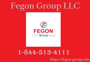 Fegon Group Image.png